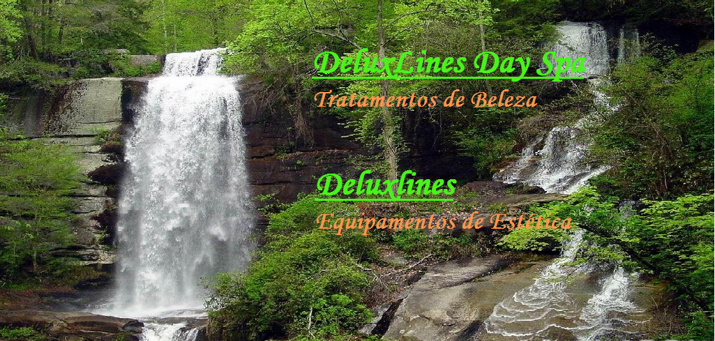 DeluxLines Day Spa