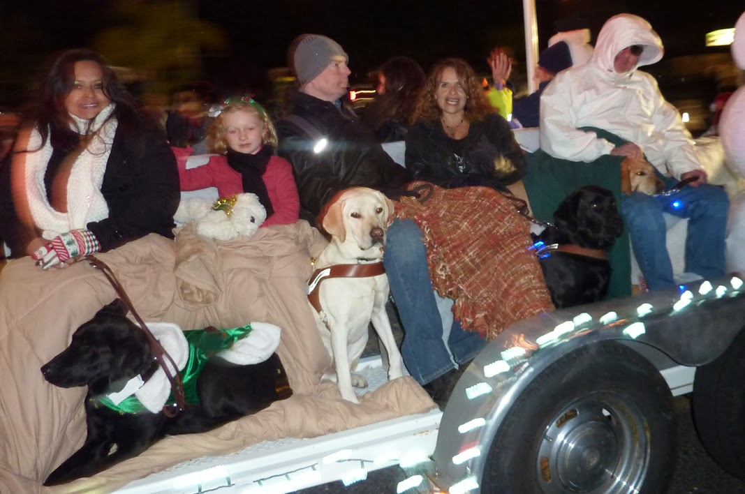 Puppy raisers and GDB graduates ride on the float together with their puppies and dogs.
