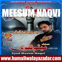 http://ishqehaider.blogspot.com/2013/11/meesum-naqvi-nohay-2014.html