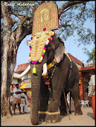 Mangalamkunnu Ayyappan,PampadyRajan,ThrikkadavoorSivaraju