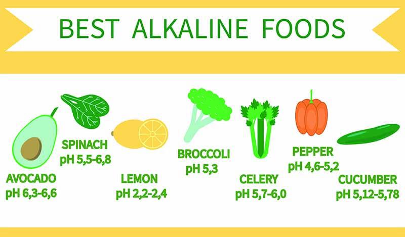 3 Disease-Fighting Foods forecast