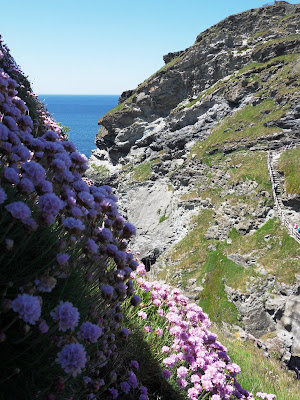 Wild flowers on cliffs at Tintagel Castle