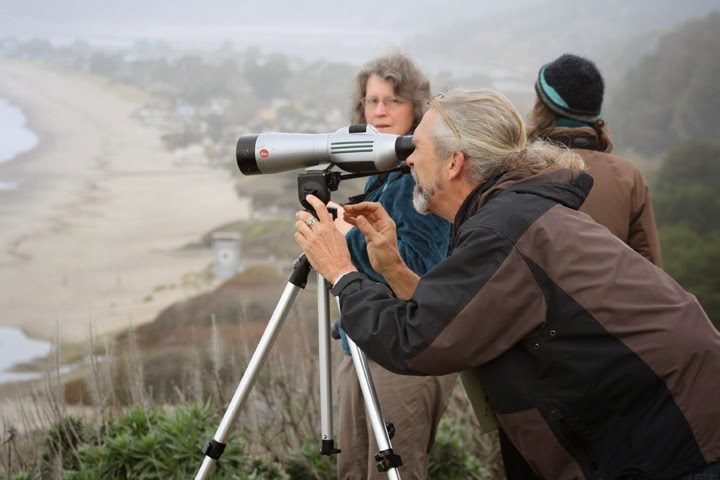 Birding with Keith Hanson and Talissa at Stinson Beach