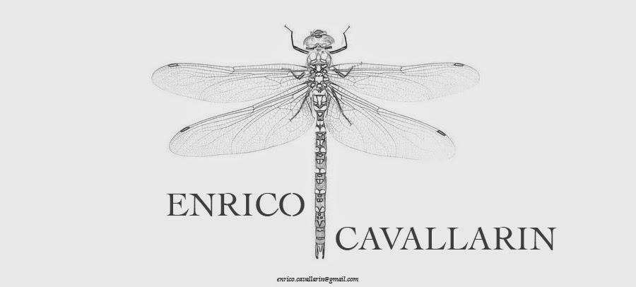 ENRICO CAVALLARIN