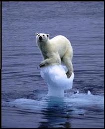 ¿Podemos Salvar el Planeta?