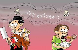 isu flu burung
