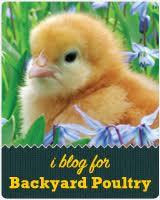 I also blog for: