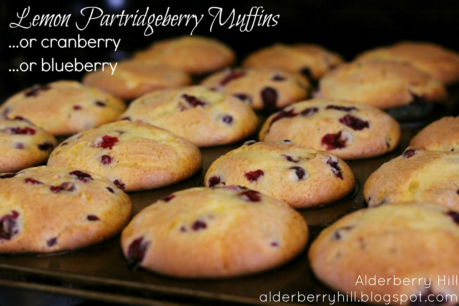 partridge berry muffins
