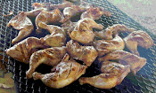 BBQ&#39;d Chicken