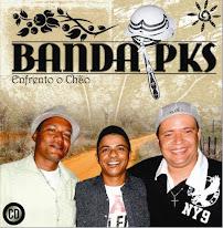 Sérgio Henrique - Banda PKS