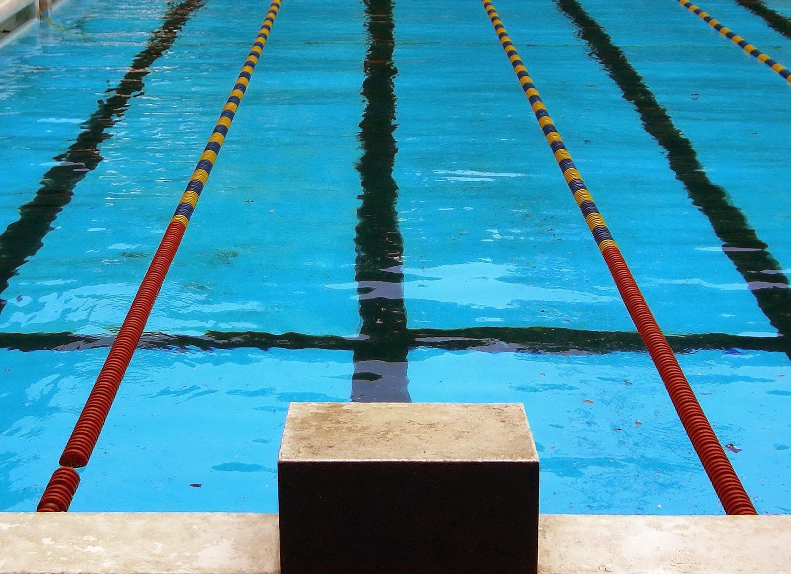 Torres novas fm nata o atividade do cntn Dream interpretation swimming in a pool