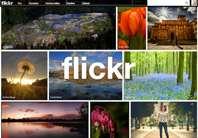 Media Flickr New