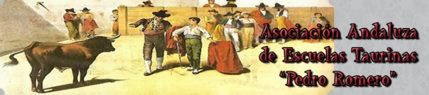 Escuelas taurinas Andalucia