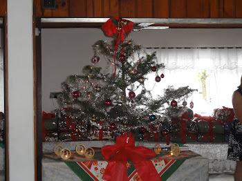 Feliz Natal e Ano Novo Bom