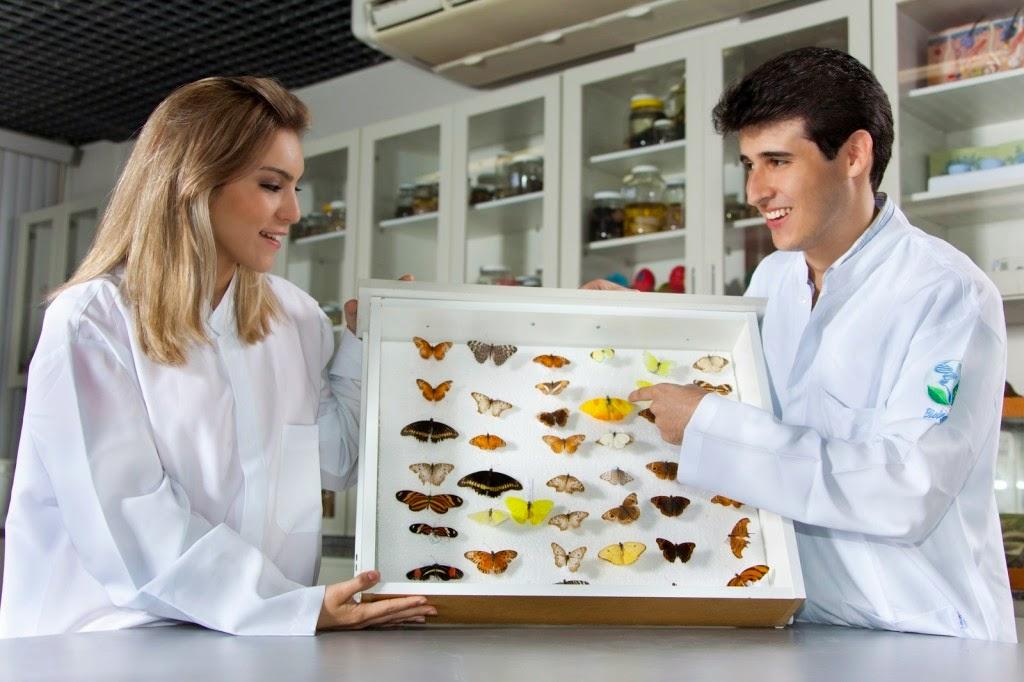 Qual a diferença entre Bacharelado e Licenciatura em Biologia?