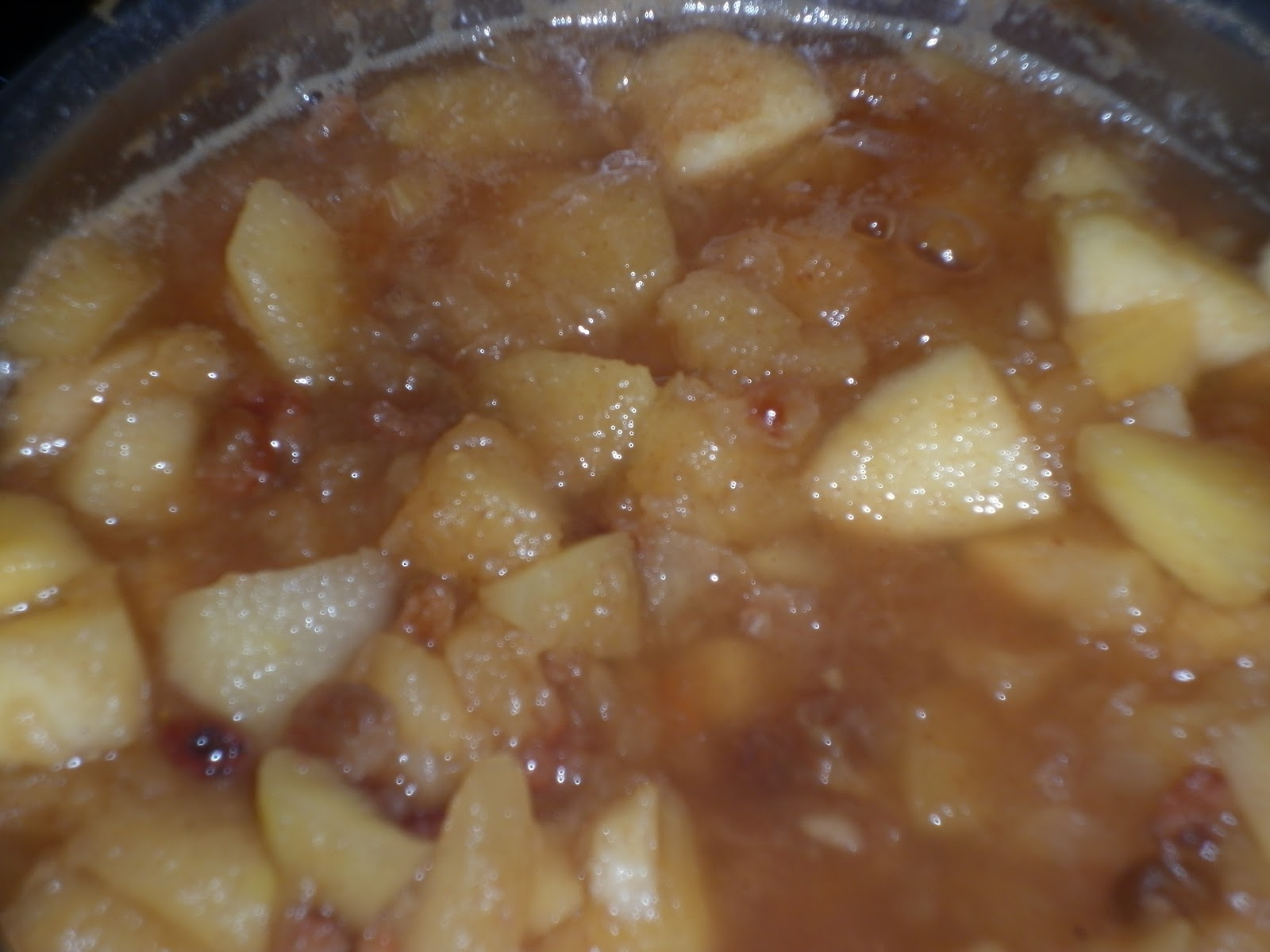 Cocina macrobi tica compota de manzana for Cocina macrobiotica