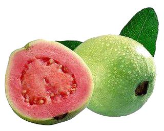 frutos com licopeno