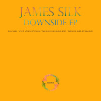James Silk Downside EP Form-and Function