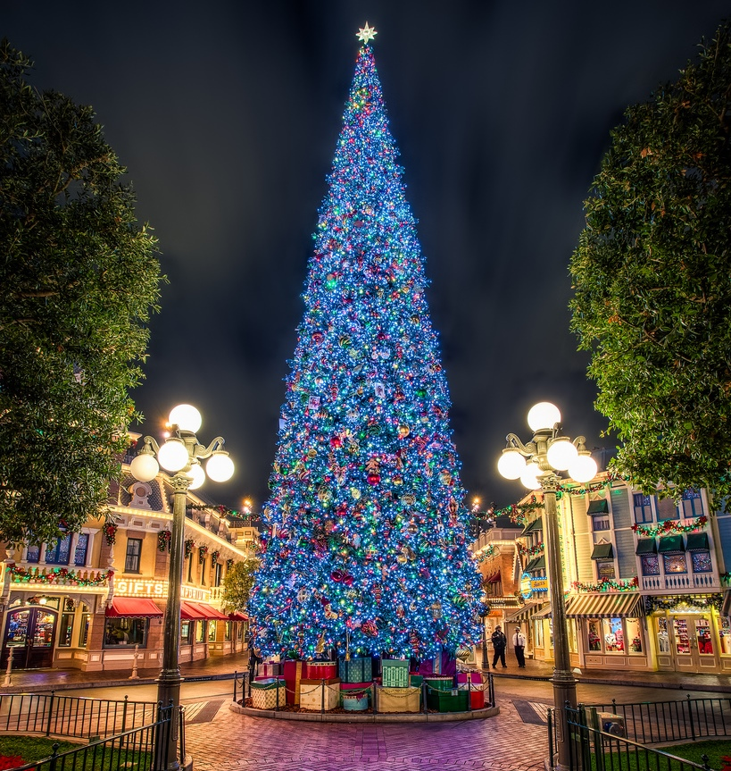 Let 39 S Travel The World 10 Most Beautiful Christmas Trees