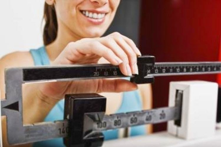 Synthroid for Weight Loss