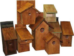 Il mondo in un giardino un giardino per gli uccellini for Quanto costruire una casetta