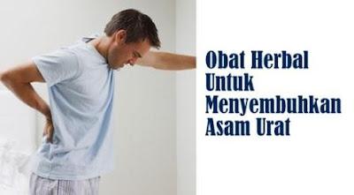 obat tradisional untuk asam urat dan darah tinggi manjur