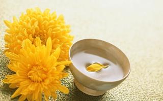 Flor-de-crisantemo-amarillo-feng-shui-siria-grandet