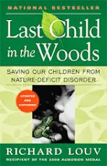 El último niño en los bosques
