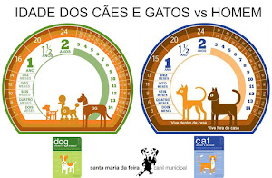Idade dos Cães e Gatos vs Homem