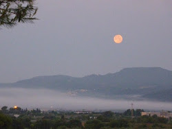 Luna Mañanera