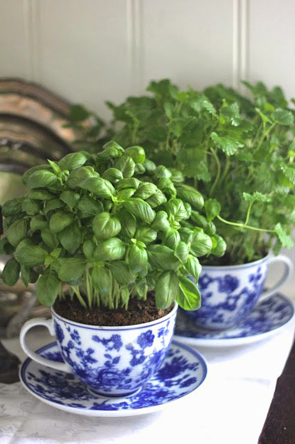 i found some wonderful ideas for kitchen herb a great way to have fresh herbs all year round