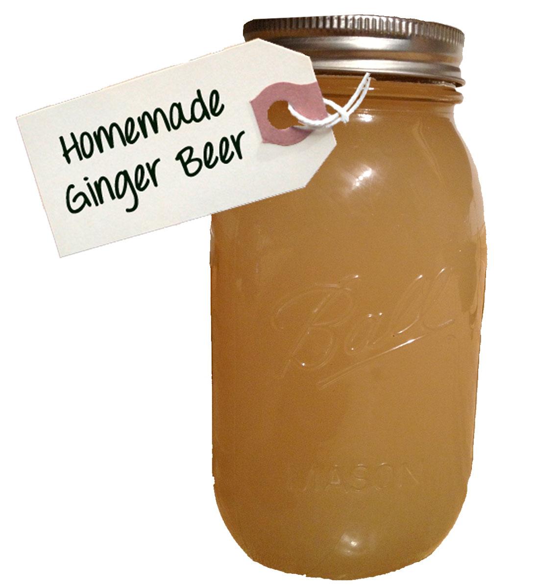 Elise Pod: Homemade Ginger Beer