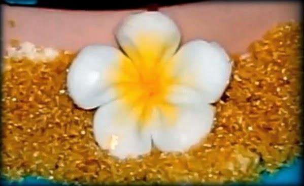 """""""sugar flower""""""""fondant flower""""""""gumpaste flower""""""""hawaiian flower""""""""plumeria flower""""""""flower cake topper""""""""cupcake flower topper"""""""