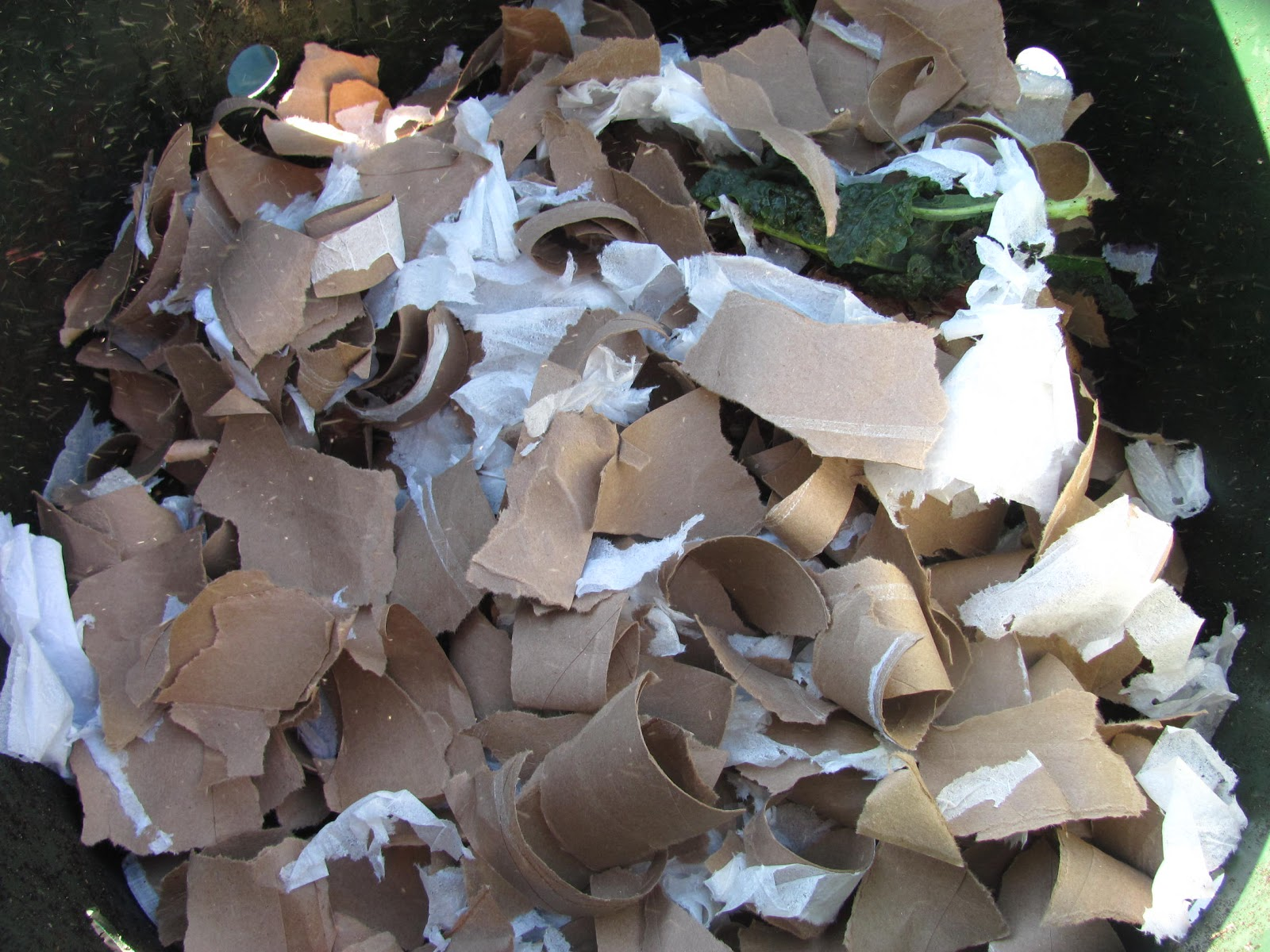 Compost Your Old Toilet Rolls!!