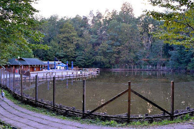 Sovata-Lake Aluniş