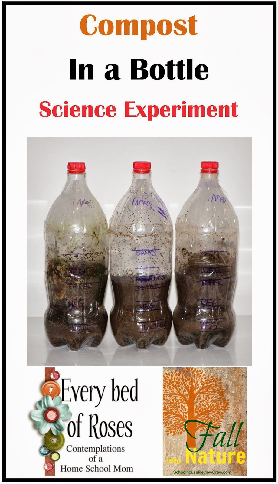 compost in a bottle pdf
