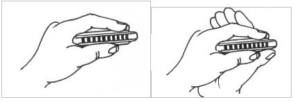 Tự học kèn harmonica Diatonic 10 lỗ online