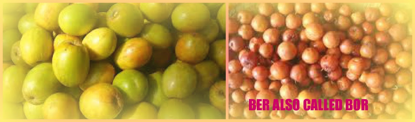 Ber Fruit India