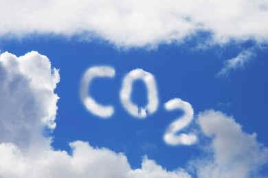 impianto di cogenerazione a biomasse vegetali ed animali
