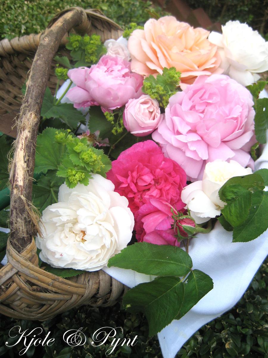 seidenfeins blog vom sch nen landleben rosenmix mix it some roses. Black Bedroom Furniture Sets. Home Design Ideas