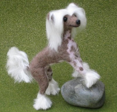 Chinese Crested Dog Breed Pictures | Dog Pictures Online