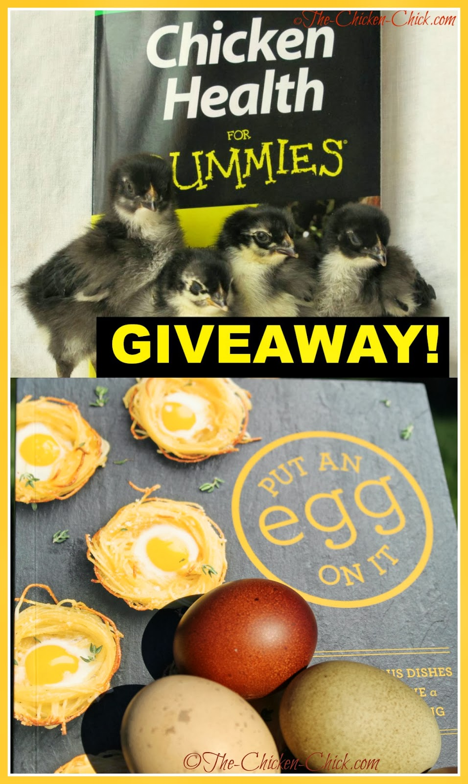 Chicken Health for Dummies and Put an Egg on It Book Giveaways