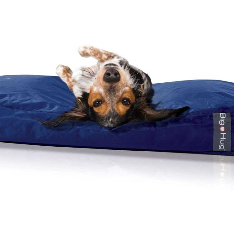 Discount Dog Beds Uk