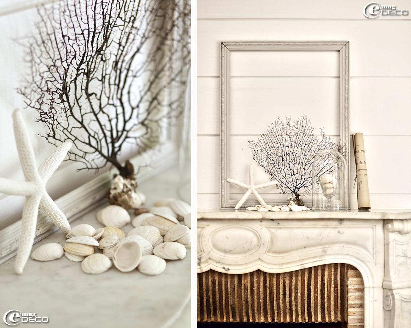 Posée sur la cheminée en marbre blanc, une composition marine, Thé et graminées, photo David Morganti