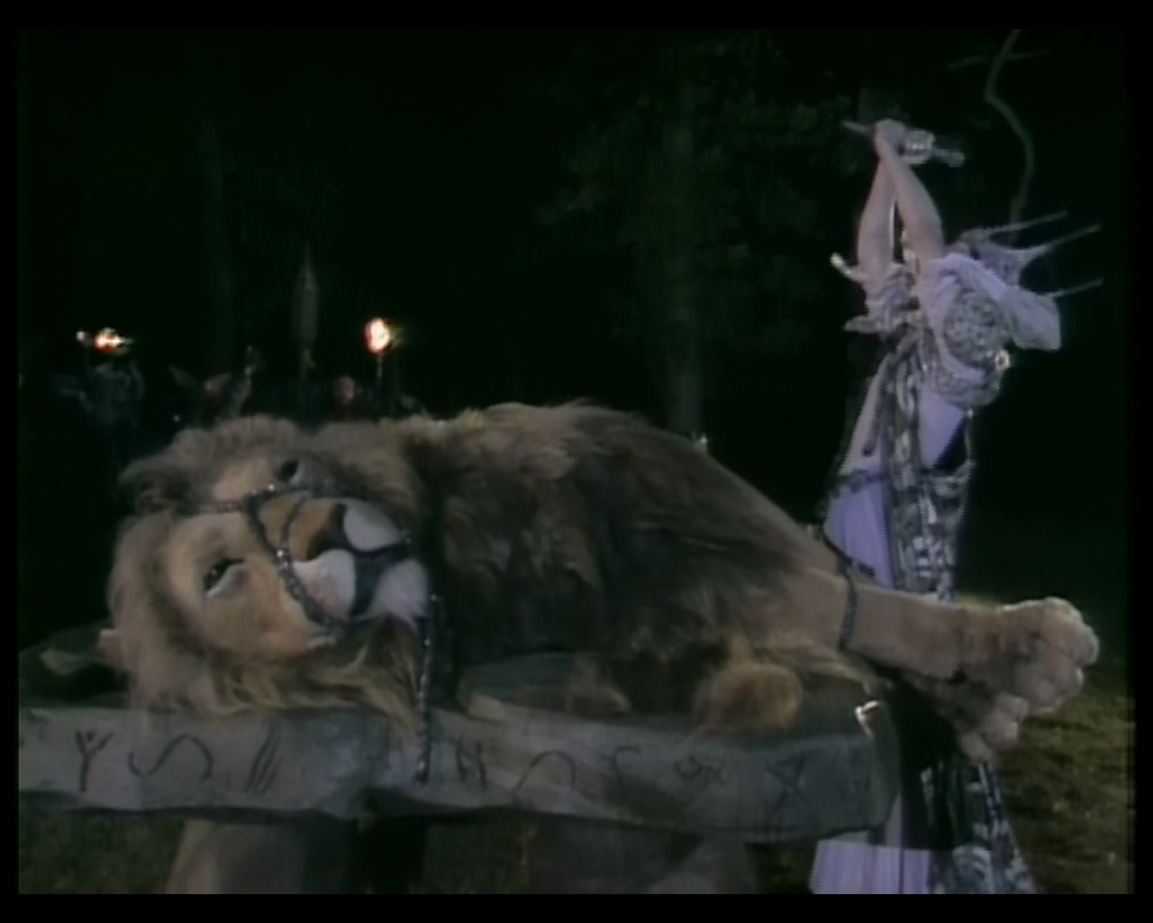 Narnia The Lion The Witch And The Wardrobe Characters Aslan's Light: Aslan.....