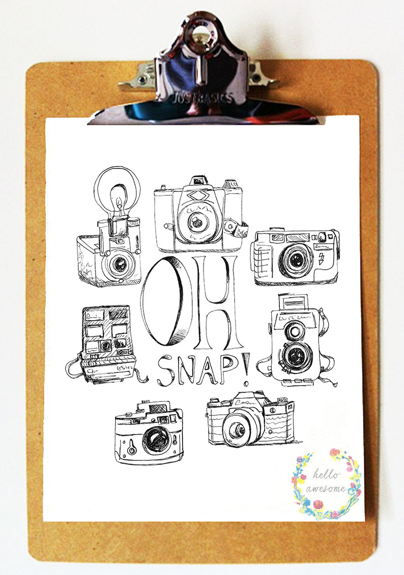 http://www.helloawesomeshop.com/collections/389337-whimsy-prints/products/7505007-oh-snap-8x10-vintage-camera-print