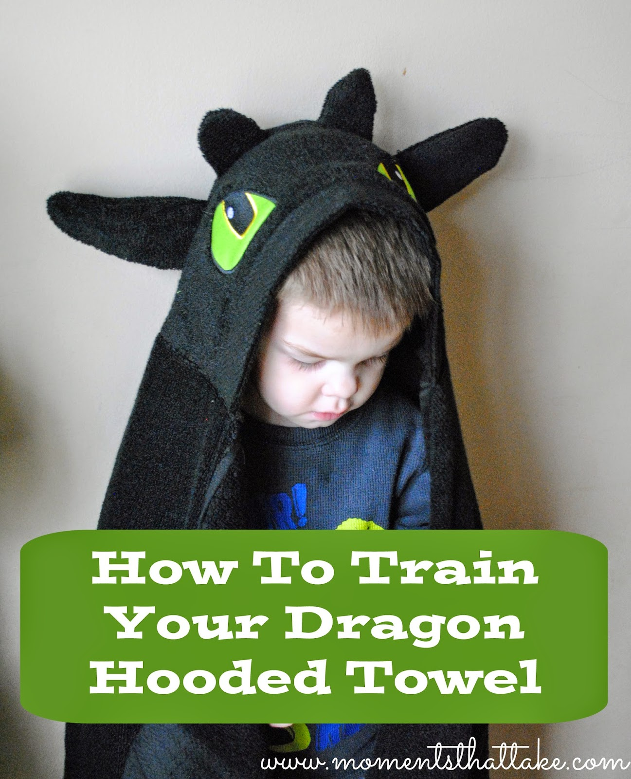 How To Train Your Dragon Hooded Towel