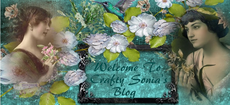 Crafty Sonia