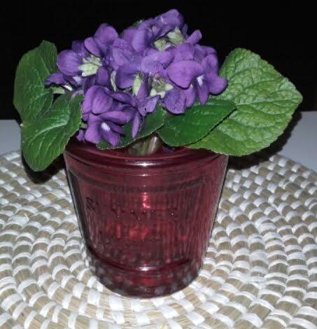 Le violette di Eva, per me