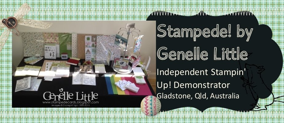 Stampede! by Genelle Little